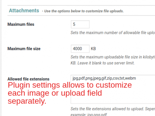 Plugin settings allows to customize each image or upload field separately.
